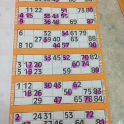 Feb 19th - Bingo night